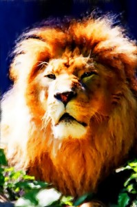 Can personal development help you be the king of the jungle?