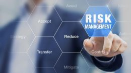 How do you minimize risk in your SME technology adoption process?